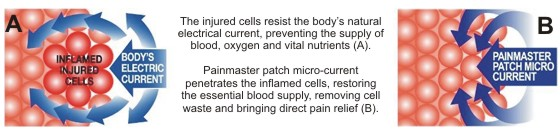 painmaster_cells (1)
